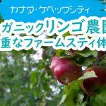 オーガニックリンゴ農園で貴重なファームスティ体験【カナダ・ケベックシティ】