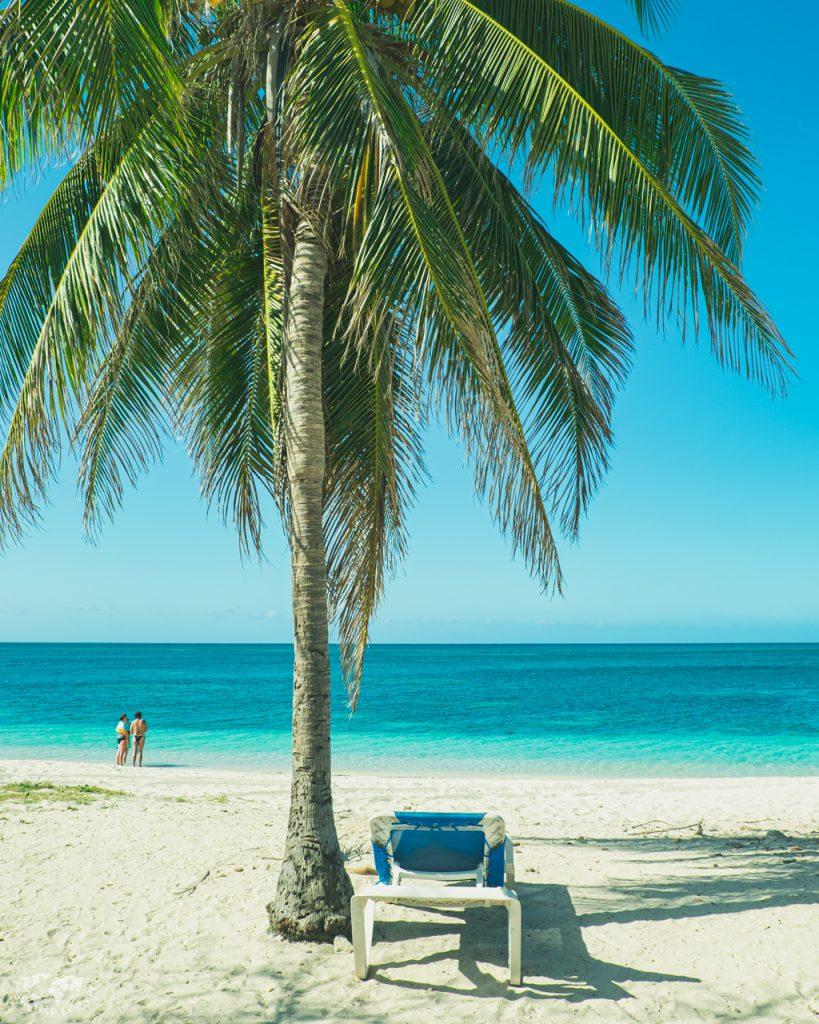 トリニダの海ヤシの木とビーチチェア