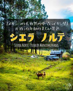 [メキシコの大自然の中でハイキング]オアハカ北部の美しい景色シエラ・ノルテ(Sierra Norte / Pueblos Mancomunadas)