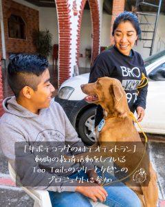 [サポテコラグの村テオティトラン]動物の救済活動をしているTeo Tailsのマリーとケビンのプロジェクトに参加
