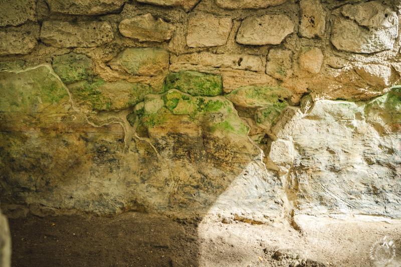 サンミゲリート遺跡のドラゴン・コンプレックス